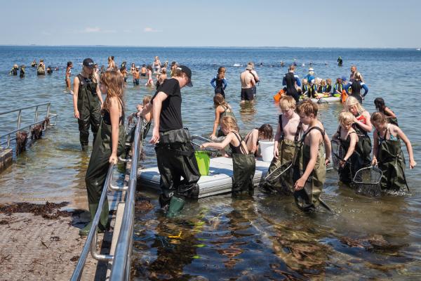 Havets dag den 9 juni – Välkomna att besöka Marint Kunskapscenter.